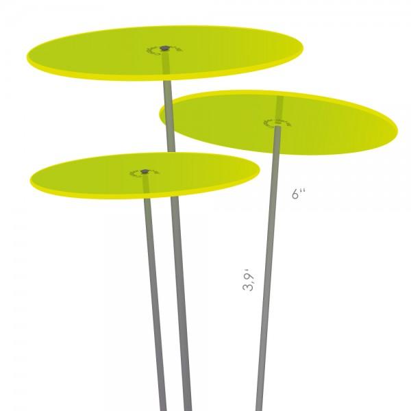 Cazador-del-sol ® | medio | tres | green