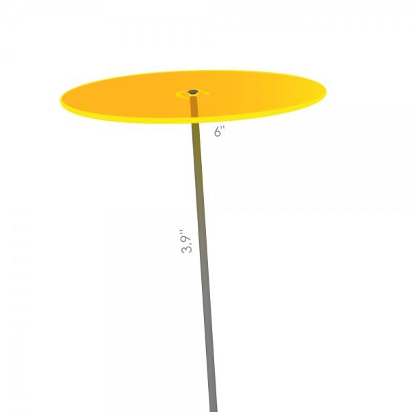 Cazador-del-sol ® | medio | yellow